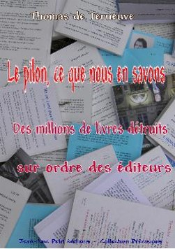 comprendre le pilon